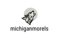 Michiganmorels